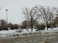 بارش برف شدید در فامنین
